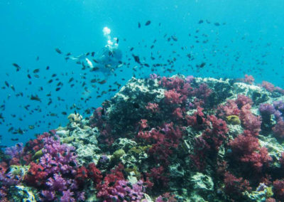 nautilus-phuket-diving-kata-beach-thailand-1