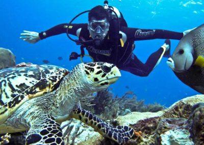 nautilus-phuket-kata-beach-diving-shop-02