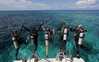 Scuba Diving PADI Courses