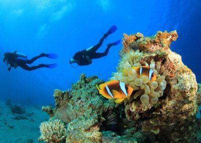 nautilus_diving_kata_beach_phuket_scuba_andaman_sea_540-04