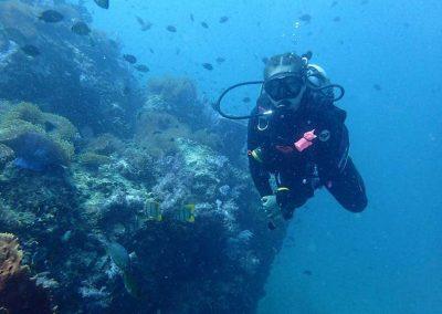 Nautilus-Diving-Phuket-Kata-Beach_Dive-Trip-Marine-Life-05
